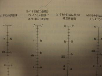IMG_4503.jpg